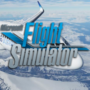 Requisitos do Sistema Microsoft Flight Simulator | Necessita de 150 GB de espaço