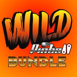 Wild Pinball Bundle