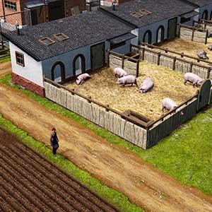Farm Manager 2021 - Suinicultura