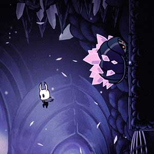 explore twisting caverns