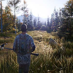 melhores técnicas de caça