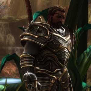 Kingdoms of Amalur Re-Reckoning remasterizados gráficos