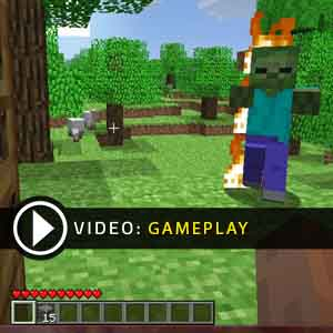 Minecraft Gameplay Video