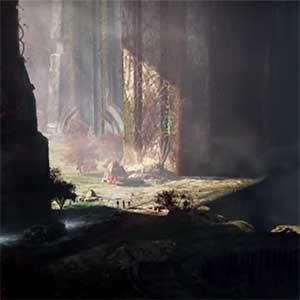atravessar florestas