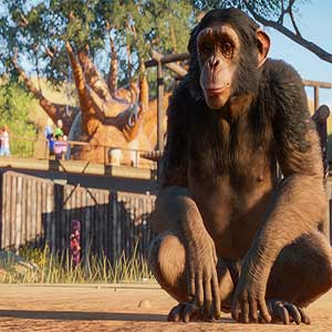 Planet Zoo Macaco