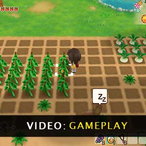 Story of Seasons Friends of Mineral Town Gameplay Video