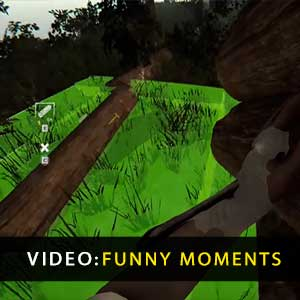 Os Momentos Engraçados da Floresta