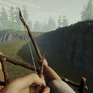 O Jogo da Floresta