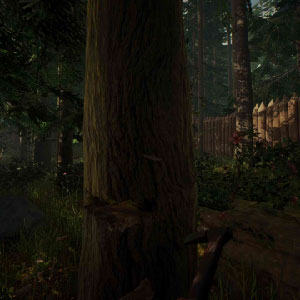 The Forest Survival