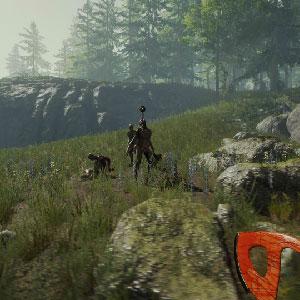 A Tela da Floresta
