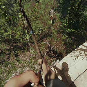 The Forest Arco e Flecha