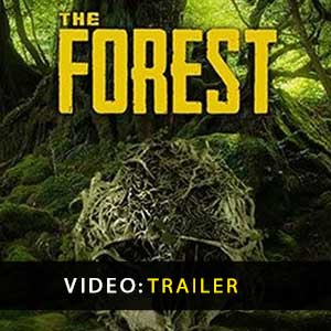 Comprar The Forest CD Key Comparar Precos