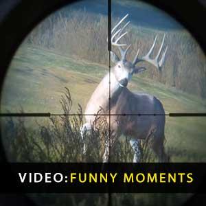theHunter Call of the Wild Momentos Engraçados